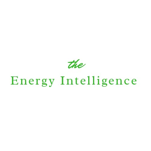 The Energy Intelligence