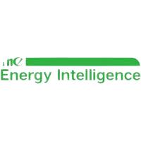 The Energy Intelligence